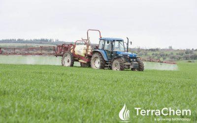 Management of spring cereal crops
